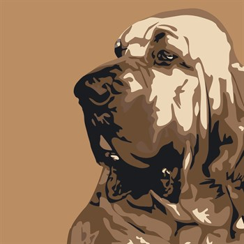 Bloodhound Print by Emily Burrowes