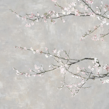 Blossom Spray III Print by Tania Bello