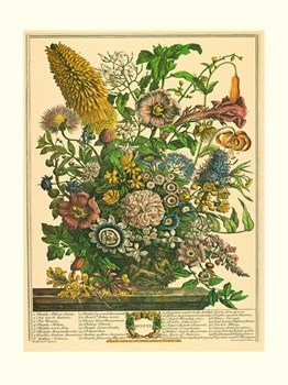 August Print by Robert Furber