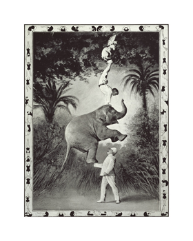 Balancing An Elephant! Fine Art Print by The Vintage Collection
