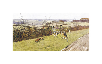Fox Chase Fine Art Print by Cecil Aldin