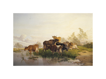 Cows in the Water Meadows Fine Art Print by Thomas Cooper
