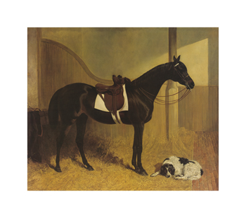 Askar and Roger in a Loose Box Fine Art Print by J.F. Herring Senior