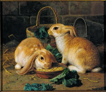 Bunnies' Meal I Print by Alfred Barber