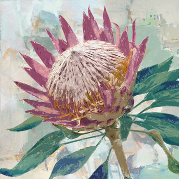 Protea King Print by Tania Bello