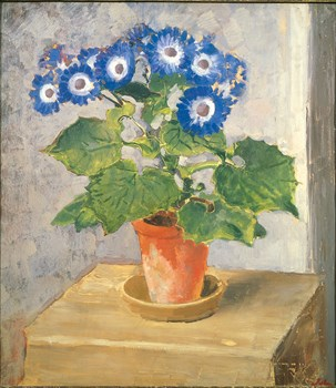 Blue Cineraria Print by Augustus John