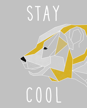 Stay Cool Canvas Print by Myriam Tebbakha