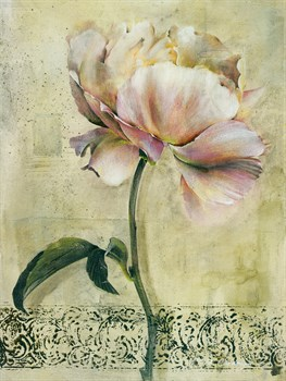 Floral Blush II Print by Carney
