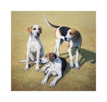 Cotswold Foxhounds Fine Art Print by Gary Stinton