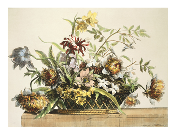 Basket of Flowers II Fine Art Print by Jean-Baptiste-Marie Pierre
