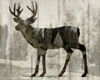 Camouflage Animals - Deer Print by Tania Bello