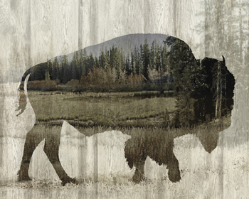 Camouflage Animals - Bison Print by Tania Bello