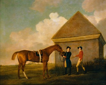 Eclipse, A Dark Chestnut Fine Art Print by George Stubbs