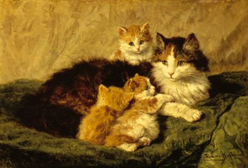 Contentment Print by Henriette Ronner-Knip