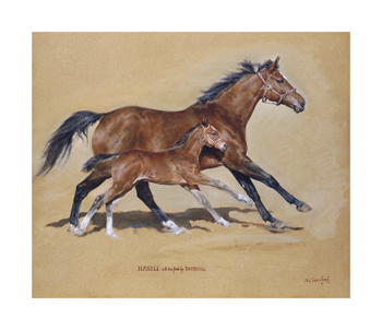 Hasili with Foal Fine Art Print by Susan Crawford