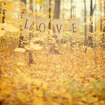 Autumn Love Print by Irene Suchocki