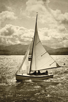 A Great Sail Print by Pete Kelly
