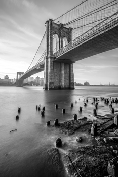 Brooklyn Shores Print by Alan Copson