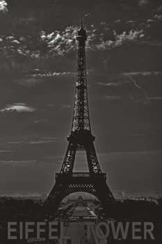 Eiffel Tower Print by John Harper