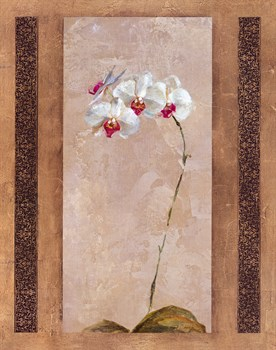 Contemporary Orchid II Print by Carney
