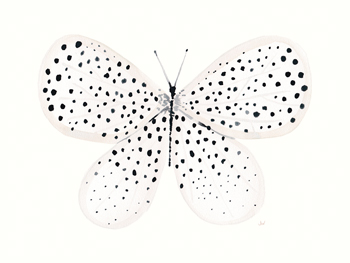 Flutterby Dance Canvas Print by Joëlle Wehkamp
