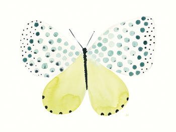 Flutterby Dapple Canvas Print by Joelle Wehkamp