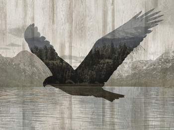 Camouflage Animals - Eagle Canvas Print by Tania Bello