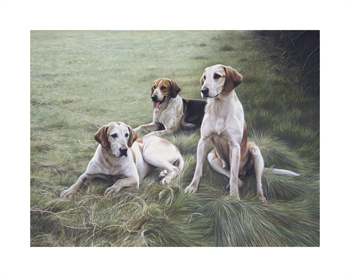 Duke Of Beaufort's Hounds Fine Art Print by Gary Stinton