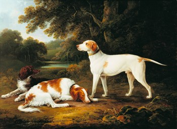 A Pointer and Two Spaniels in a Park Print by Charles Henry Schwanfelder