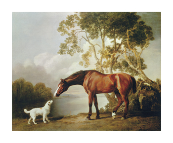 Bay Horse and White Dog Fine Art Print by George Stubbs