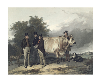 A Scene at Wiseton Fine Art Print by Richard Ansdell