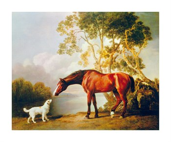 Bay Horse and White Dog Print by George Stubbs