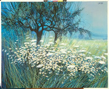 Field of Daisies Print by Gilbert Michaud