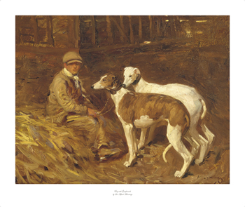 Boy with Greyhounds Fine Art Print by Sir Alfred Munnings