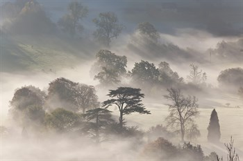 Misty Morning Print by Peter Adams