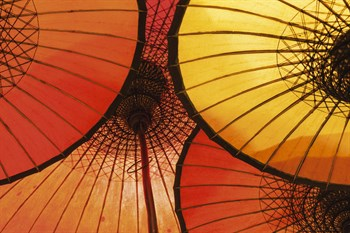Oriental Umbrellas Print by Peter Adams