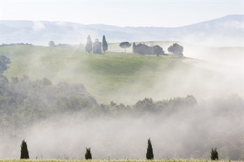 Tuscan Morning Canvas Print by Peter Adams