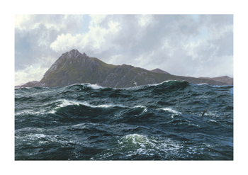 Cape Horn Fine Art Canvas Print by Steven Dews