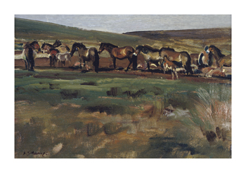 Exmoor Ponies Fine Art Print by Sir Alfred Munnings