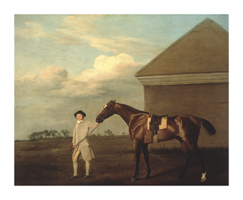 Firetail with his Trainer on Newmarket Heath Fine Art Print by George Stubbs