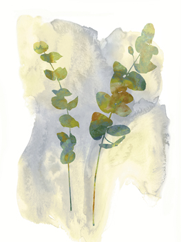 Wildflower Duet Print by Tania Bello