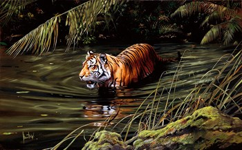 Cooling Off Fine Art Print by Spencer Hodge