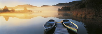 Tranquil Mist Print by Peter Adams
