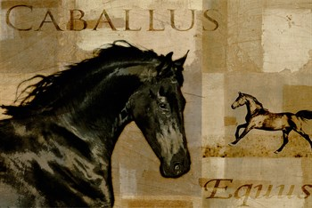 Caballus I Print by Mark Chandon