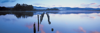 Loch Shiel Print by Peter Adams