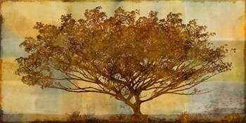 Autumn Radiance Sepia Print by Mark Chandon