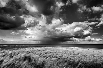 Impending Storm Print by Steve Docwra