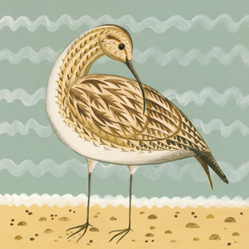 Whimsical Whimbrel Print by Catriona Hall