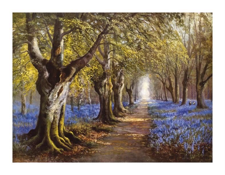 Budding Spring By Daniel Sherrin Prints And Fine Art